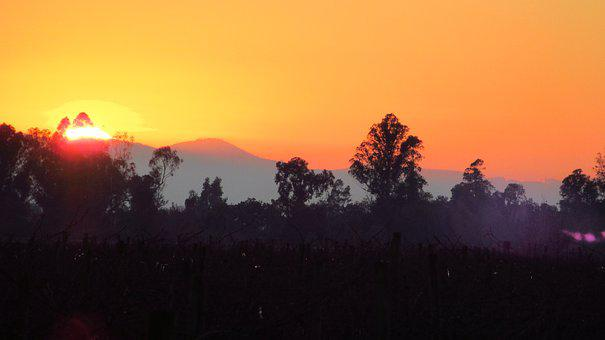 Sunset, Landscape, Sun, Nature, Field