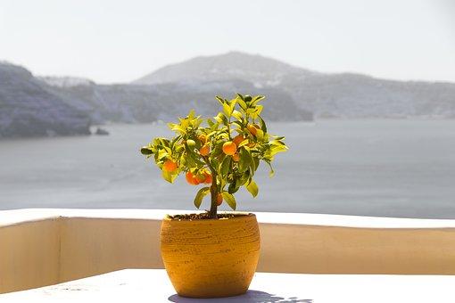 Santorini, Greece, Landscape, Nature, Holiday, Summer