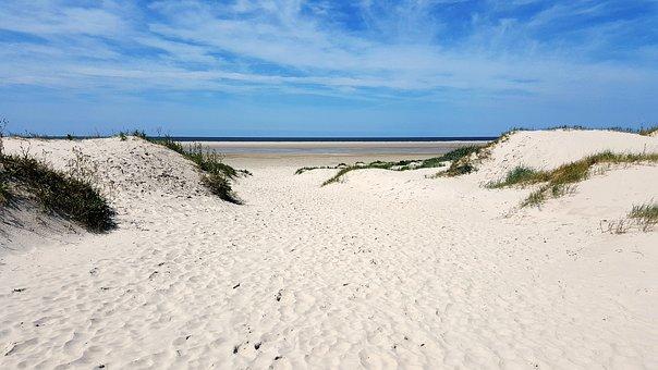 Beach, North Sea, By The Sea