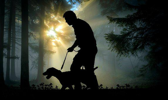Walk, Man, Dog, Animal, Forest, Leisure, Hiking