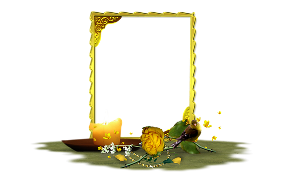 Rose, Yellow, Flower, Picture Frame