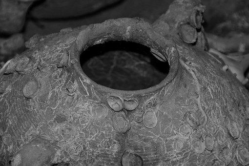 Amphora, Old, Historically, Mediterranean, Relic