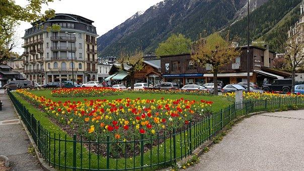 France, Mountain, Chamonix, City, Landscape, Flowers