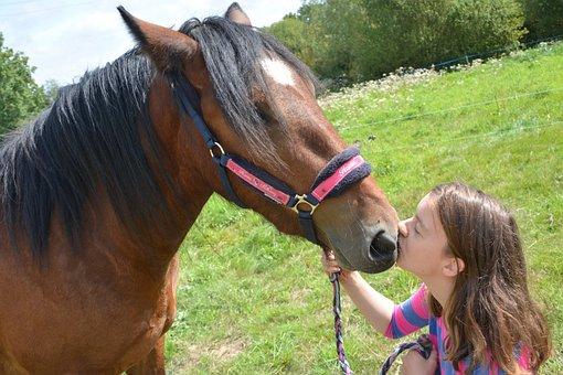 Kiss, Horse, Girl, Woman, Head, Profile, Complicity
