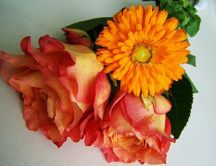 Flower Bouquet, Orange-pink Flowers, Cut Flower