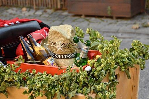 Cart, Stroller, Beer, Beer Bottles, Hops, More