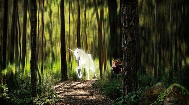 Elf, Forest, Unicorn, Fantasy Picture, Photo Montage