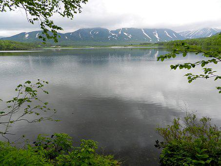 Lake, Mountains, Forest, Greens, Birch, Spring, Tundra