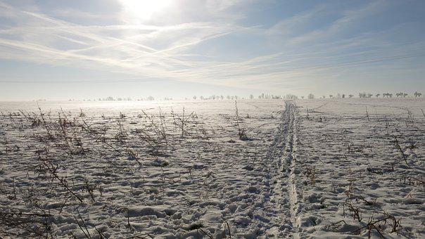 Trace, Cold, Wintry