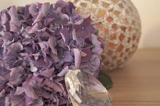 Hydrangea, Purple, Background, Blossom, Bloom, Diamond