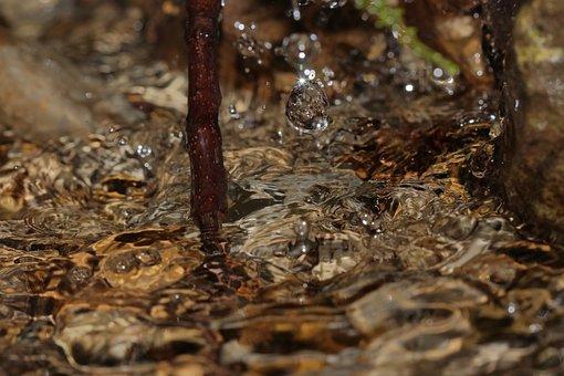 Drop Of Water, Water, Spray, Nature, Liquid, Wet, Drip