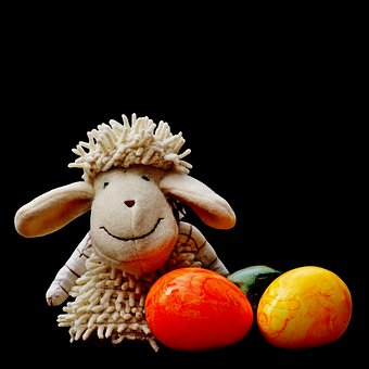 Sheep, Egg, Colorful, Greeting Card, Spring, Easter
