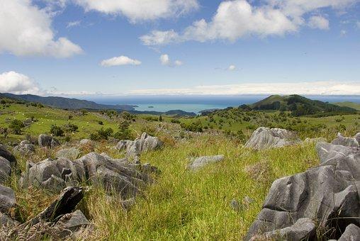 New Zealand, The Coast, View, Landscape, Nature