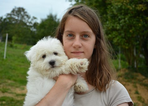 Puppy, Girl, Face, Portrait, Hug Complicity, Tenderness