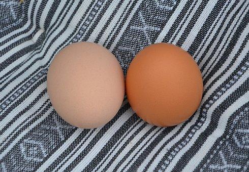 Chicken Eggs, Food, Power, Eat, œuf, Chicks