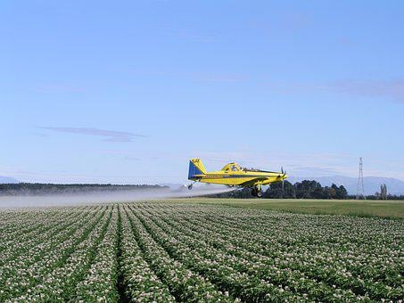 Spray, Plane, Agriculture, Field, Potatoes, Nature