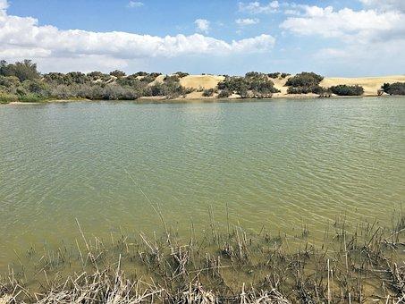 Desert, Landscape, Sand Dune, Nature, Sand, Water, Lake