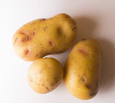 Potato, Potatoes, Food, Vegetable, Fresh, Organic