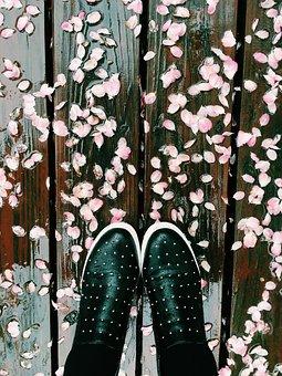 Fallen Flowers, Showers Early Break, Spring, Rainy, Wet