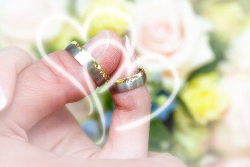Wedding Rings, Roses, Background, Wedding, Thumb, Heart