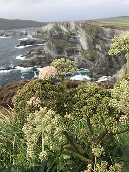 Ireland, Cliffs, Sea, Nature, Rock, Coast, Atlantic