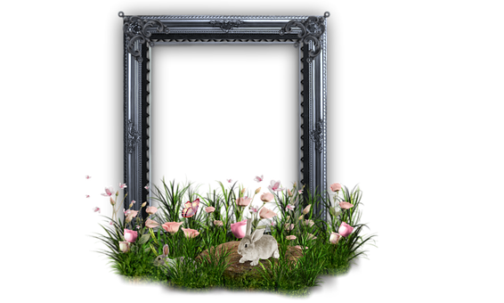 Png, Frame, Rabbit Picture, Design