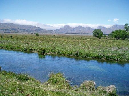 New, Zealand, Grays River, New Zealand, Nature