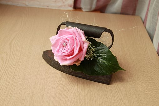 Iron, Vintage, Pink, Leaf, Pin, Retro, Flowers