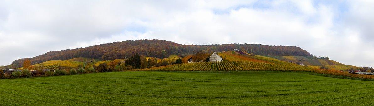 Herbstlandschaft, Vineyards, Nature, Winegrowing
