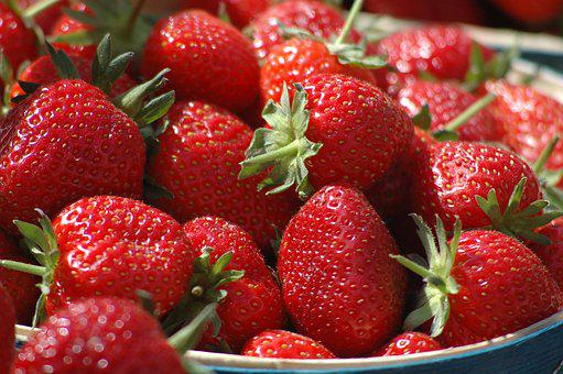 Basket, Strawberries, Red