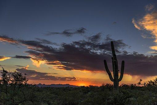 Sunrise, Cable, Arizona