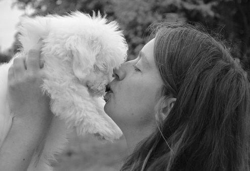 Kiss, Dog, Girl, Woman, Young Woman, Complicity