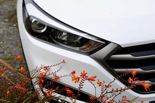 Auto, Parked, Spotlight, Park, Automotive, Parked Car