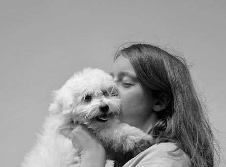 Kiss, Puppy, Dog, Girl, Young Woman, Tenderness