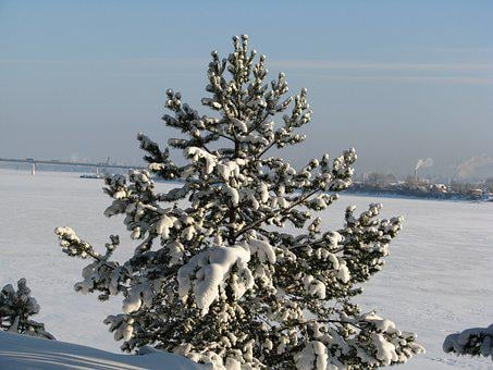 Winter, Ice, Frost, Snow, The River Kama, Russia