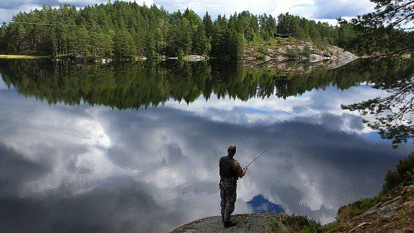 Fish, Norway, Water, Fishing Rod, Rest, Peaceful