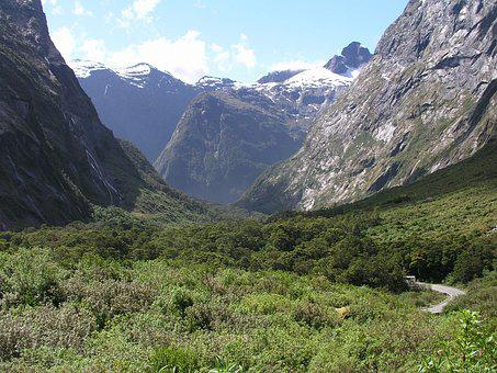 New Zealand, New, Zealand, Milford Sound, Fjord, Nature