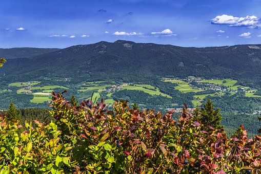 Bavarian Forest, Mountain, Bavaria, Landscape, Germany