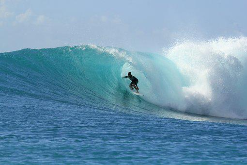 Surfing, Waves, Paradise, Summer, Adventure, Holiday