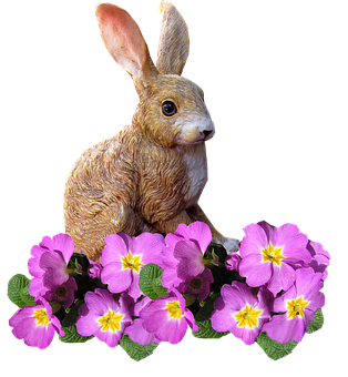 Rabbit, With, Pink, Flowers