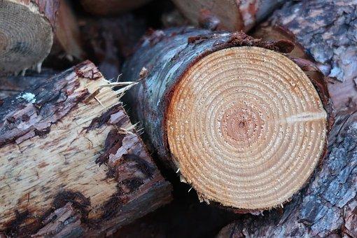 Wood, Log, Firewood, Annual Rings, Tree Bark