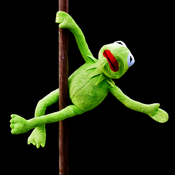 Pole Dance, Kermit, Funny, Soft Toy, Animal, Toys