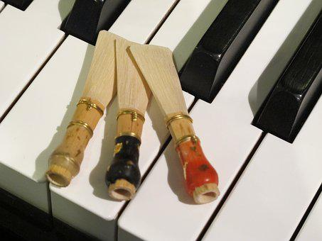 Music, Bassoon, Piano