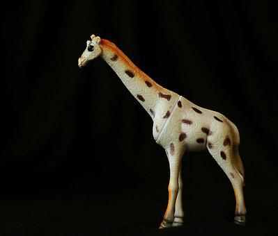 Giraffe, Trinket, Toy, Black, Background, Little
