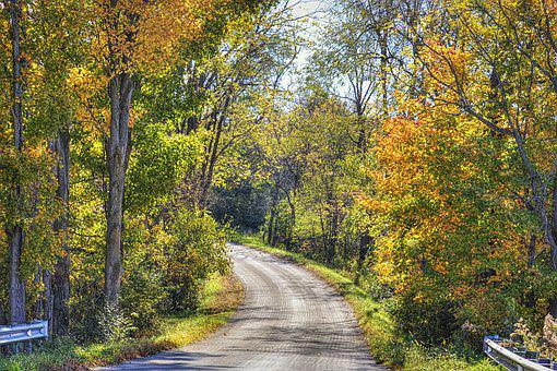 Scenery, Road, Autumn, Trees, Artistic, Art Print