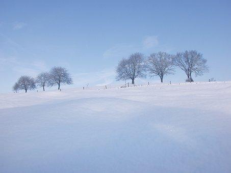 Snow, Winter, Landscape, Wintry, Cold, White, Light