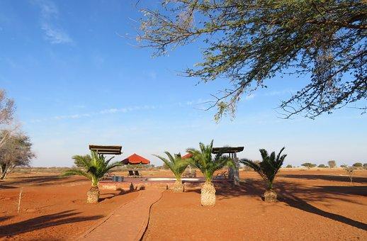 Africa, Lodge, Swimming Pool, Namibia, Dream, Hotel