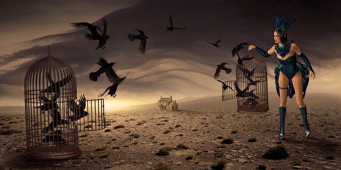 Fantasy, Mysticism, Crow, Mood, Fairy Tales, Atmosphere