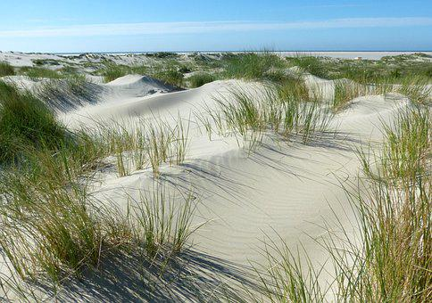 Dunes, Beach, North Sea, Borkum