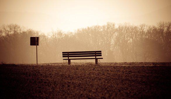 Bank, Stop, Nature, Field, Lonely, Alone, Melancholic